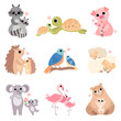Cute Animal Families Set, Raccoon, Turtle, Pig, Hedgehog, Bird, Sheep, Koala, Flamingo, Bear Vector Illustration