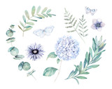 Watercolor greenery set. Hand drawn winter illustration with eucalyptus branch, leaves and butterfly. Vintage botanical plant - 252802993