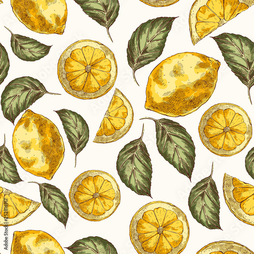 Lemons and leaves hand drawn vector seamless pattern - 252816917
