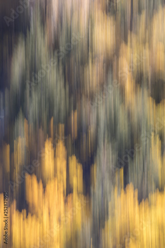 Fall Color Abstract © kpeggphoto
