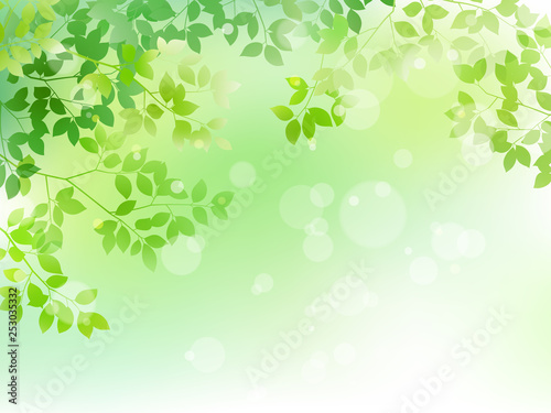 Green leaf and light background