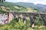 Durdevica Tara Bridge on Tara River, Montenegro