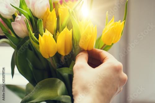 Tulpen mit einer Hand