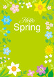 "Round frame of Colorful Wildflowers, including words ""Hello Spring"" - Vertical layout, green color background - 253085972"