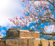 Parthenon spring season almond's flrowers Acropolis in Athens