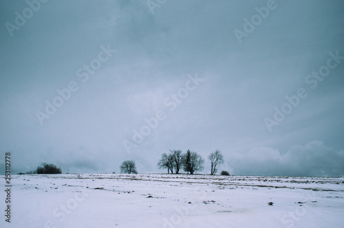 Zakopane winter landscape with trees and clouds
