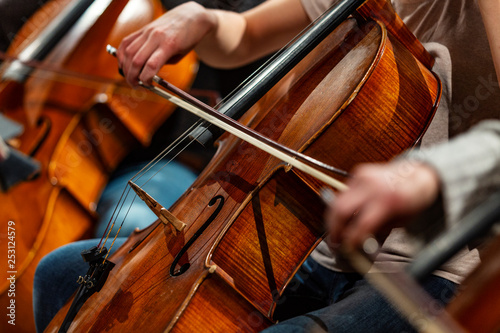 Orchestra Cello Players Background - 253124579