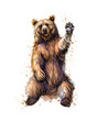 Friendly brown bear sitting and waving a paw from a splash of watercolor