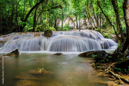 beautiful waterfall in green forest - 253202360