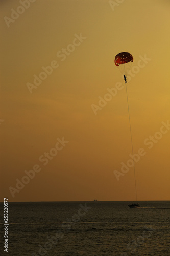 Silhouette of skydiver flies on background of sunset sky and sea