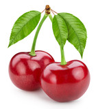 Cherry leaf isolated