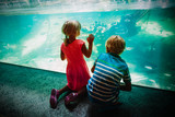 Fototapeta Zwierzęta - kids -boy and girl -watching fishes in aquarium © nadezhda1906