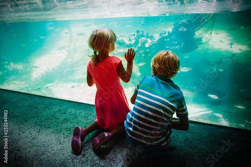 kids -boy and girl -watching fishes in aquarium - 253244982