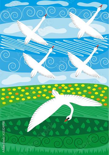 white swan fly - 253249181