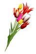 Blumen 1025