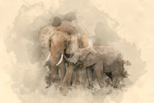 "Постер, картина, фотообои ""Beautiful watercolour painting of Mother and Calf Baby African Elephant Loxodonta Africana"""