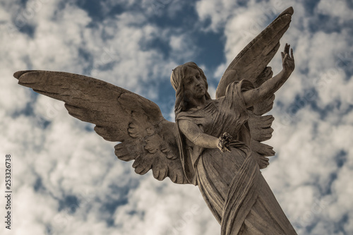 Angel - Buenos Aires - 253326738