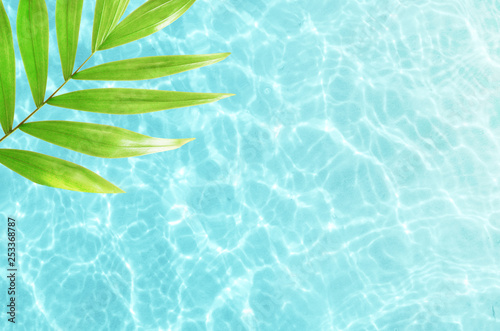 Beautiful nature green palm leaf on tropical sea. Summer background. Summer vacation. Travel concept.