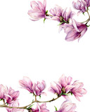 Watercolor magnolia and leaves card. Hand painted border with flowers on branch isolated on white background. Floral elegant illustration for design, print. - 253376558
