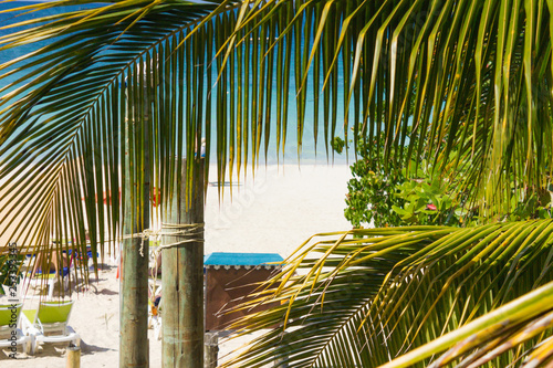 beautiful tropical  sandy beach with palms turquise caribbean sea at Jamaica