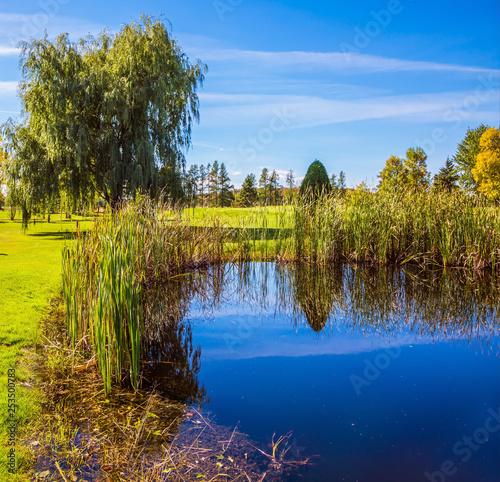 Beautiful park - 253500783