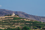 ?retan Landscape with lots of olive trees over the rolling hills, Crete, Greece and churches on top of the hills