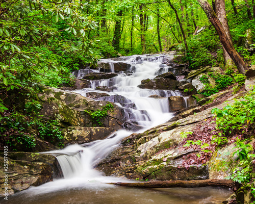 waterfall in forest - 253574935