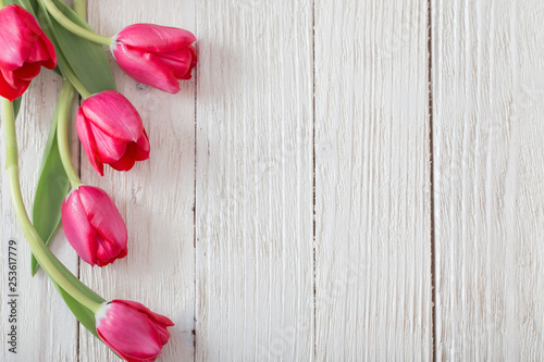 pink tulips on white wooden background - 253617779