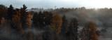 Fototapeta Na ścianę - Panorama del bosco © abstudio1