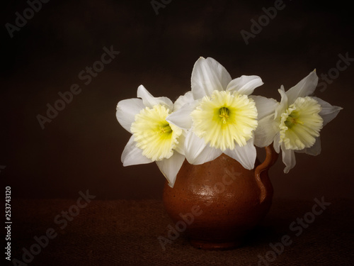 Vintage style still life of pale and beautiful daffodil, narcissus flowers and jug. Chiariscuro light painting. © Mushy