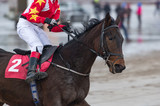 Close oup on race horse and jockey running on the beach