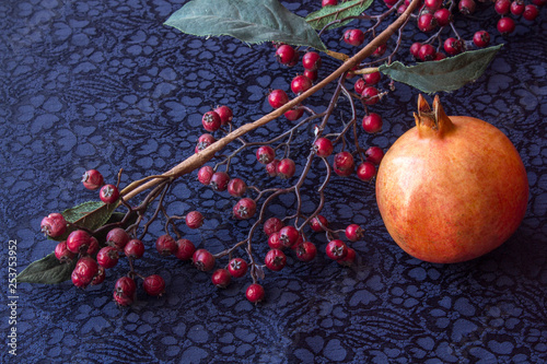 still life - ikebana of branch with dried berries and Garnet. Textile background. © Mikhail