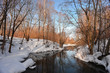 Winter forest, river and reflection of wood