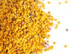 Pellets of Yellow Bee Pollen