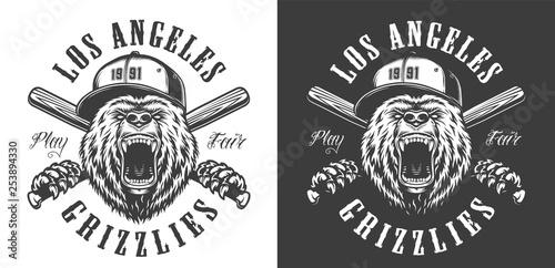 Vintage monochrome baseball club emblem - 253894330