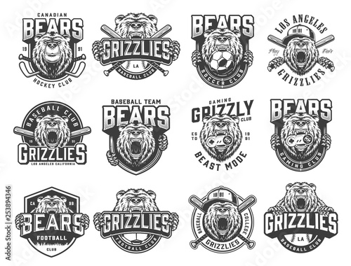 Vintage monochrome sport teams emblems set - 253894346