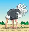 Ostrich hides its head in the ground - Illustration