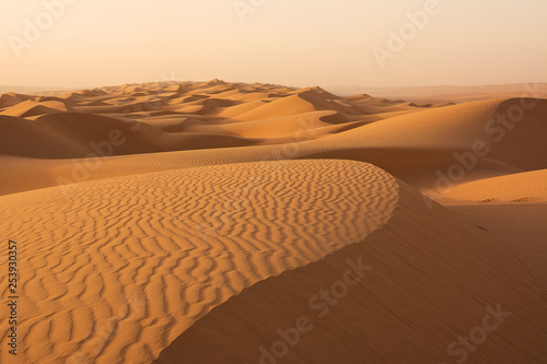 Leinwanddruck Bild Dunes of the Wahiba Sand Desert at dawn (Oman)