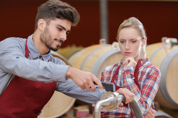 male and female workers in wine cellar