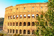 view of Colosseum in Rome, Italy in the sunrise