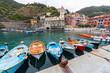 Scorcio di Vernazza, Parco Naturale delle Cinque Terre, La Spezia, Mar Ligure, Liguria, Italia - 254002934