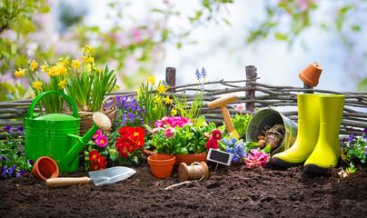 Planting spring flowers in the garden © Alexander Raths