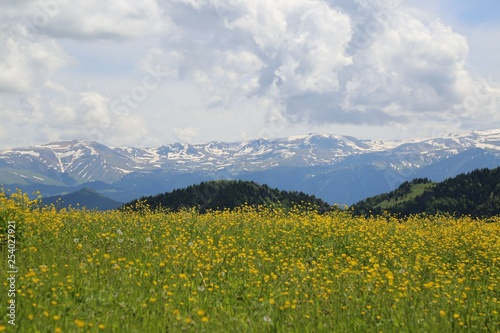 Spring Landscape Photos.savsat/artvin/turkey