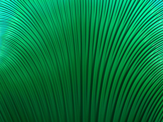 abstract fractal background with bright green smooth lines
