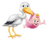 A stork or crane cartoon bird carrying a new born baby as in the pregnancy myth.