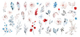 Set watercolor elements of roses collection garden red, blue flowers, leaves, branches, Botanic  illustration isolated on white background. - 254161161