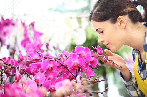 woman smells the flowers in the garden, fragrance of orchids - 254245376