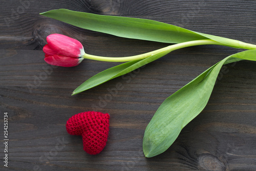 Red tulips on wooden background. View from above.