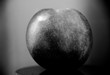 Artistic photo of an apple in black and white