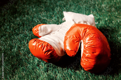 red boxing gloves on green grass.
